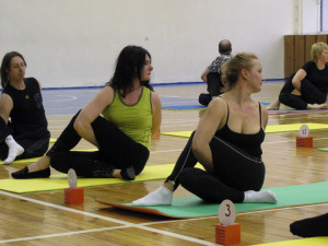 yogi-dom-sporta-12